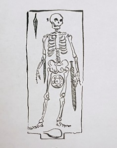 Northumbrian Age skeleton